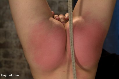 Photo number 5 from Inverted, elbows bound, severely arched back<br>Brutal crotch rope, massive screaming orgasms! EPIC! shot for Hogtied on Kink.com. Featuring Elise Graves in hardcore BDSM & Fetish porn.