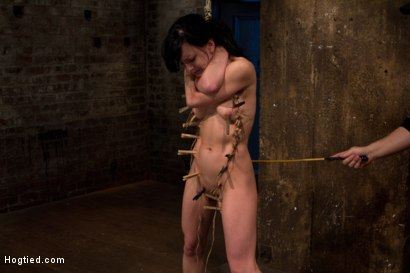 Photo number 14 from Choke out tie<br>Zippered, caned, tortured w/brutal orgasms, pulled to toes & crotch roped! INTENSE! shot for Hogtied on Kink.com. Featuring Elise Graves in hardcore BDSM & Fetish porn.