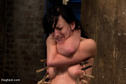 Photo number 11 from Choke out tie<br>Zippered, caned, tortured w/brutal orgasms, pulled to toes & crotch roped! INTENSE! shot for Hogtied on Kink.com. Featuring Elise Graves in hardcore BDSM & Fetish porn.