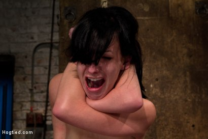 Photo number 5 from Choke out tie<br>Zippered, caned, tortured w/brutal orgasms, pulled to toes & crotch roped! INTENSE! shot for Hogtied on Kink.com. Featuring Elise Graves in hardcore BDSM & Fetish porn.