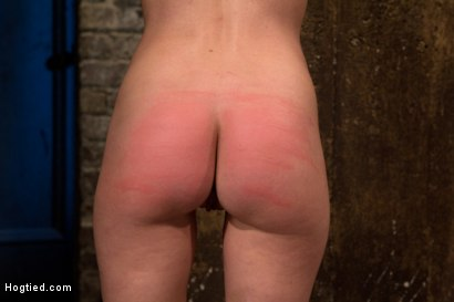 Photo number 6 from Choke out tie<br>Zippered, caned, tortured w/brutal orgasms, pulled to toes & crotch roped! INTENSE! shot for Hogtied on Kink.com. Featuring Elise Graves in hardcore BDSM & Fetish porn.