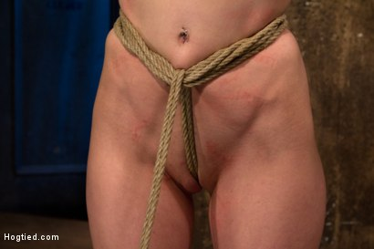 Photo number 7 from Choke out tie<br>Zippered, caned, tortured w/brutal orgasms, pulled to toes & crotch roped! INTENSE! shot for Hogtied on Kink.com. Featuring Elise Graves in hardcore BDSM & Fetish porn.