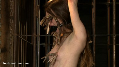 Photo number 23 from The Destruction of Sister shot for The Upper Floor on Kink.com. Featuring Lilac Wine and Sophie Monroe in hardcore BDSM & Fetish porn.