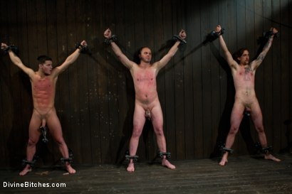 Photo number 2 from New Slave Meat Competition LIVE! shot for Divine Bitches on Kink.com. Featuring Aiden Starr, Skyeboy, Ashley Edmonds, Dean Morrato and Chip Tanner in hardcore BDSM & Fetish porn.