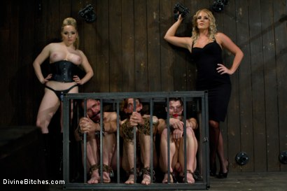 Photo number 3 from New Slave Meat Competition LIVE! shot for Divine Bitches on Kink.com. Featuring Aiden Starr, Skyeboy, Ashley Edmonds, Dean Morrato and Chip Tanner in hardcore BDSM & Fetish porn.