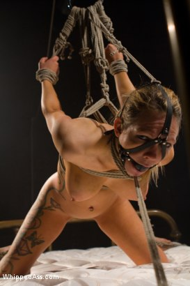 Photo number 8 from Where In The World Is Rain Degrey? shot for Whipped Ass on Kink.com. Featuring Maitresse Madeline Marlowe  and Rain DeGrey in hardcore BDSM & Fetish porn.