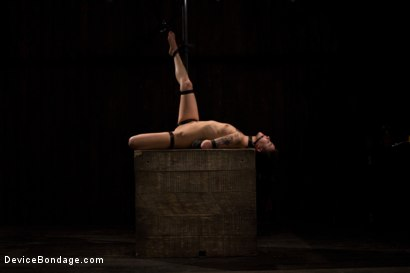 Photo number 5 from This bitch needs to be fixed shot for Device Bondage on Kink.com. Featuring Hona Li in hardcore BDSM & Fetish porn.