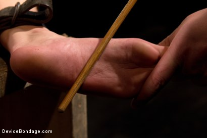 Photo number 9 from This bitch needs to be fixed shot for Device Bondage on Kink.com. Featuring Hona Li in hardcore BDSM & Fetish porn.