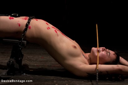 Photo number 15 from This bitch needs to be fixed shot for Device Bondage on Kink.com. Featuring Hona Li in hardcore BDSM & Fetish porn.