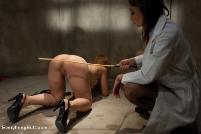 Photo number 5 from Anal Research shot for Everything Butt on Kink.com. Featuring Anthony Rosano, Amber Rayne and Audrey Rose in hardcore BDSM & Fetish porn.