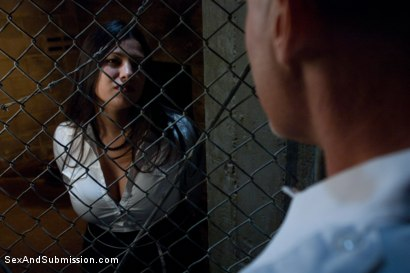 Photo number 1 from The Mule shot for Sex And Submission on Kink.com. Featuring Mark Davis and Dana Vixen in hardcore BDSM & Fetish porn.