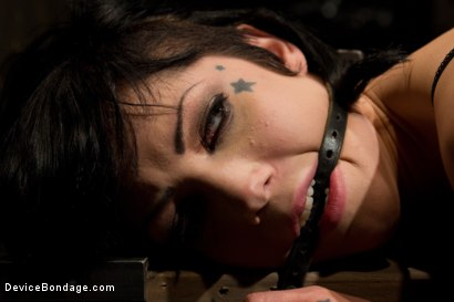 Photo number 7 from Never too hot to be used and abused  shot for Device Bondage on Kink.com. Featuring Asphyxia Noir in hardcore BDSM & Fetish porn.