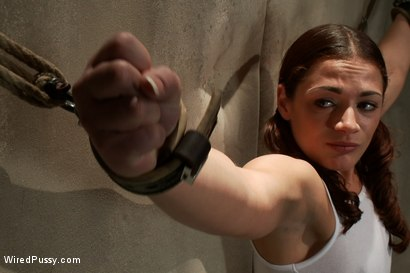 Photo number 2 from Screaming Toughgirl shot for Wired Pussy on Kink.com. Featuring Bobbi Starr, Felony and Ten in hardcore BDSM & Fetish porn.