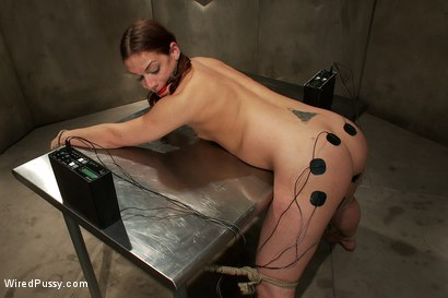 Photo number 14 from Screaming Toughgirl shot for Wired Pussy on Kink.com. Featuring Bobbi Starr, Felony and Ten in hardcore BDSM & Fetish porn.