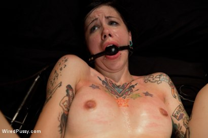 Photo number 12 from The Interview: Part 1 shot for Wired Pussy on Kink.com. Featuring Lorelei Lee and Krysta Kaos in hardcore BDSM & Fetish porn.
