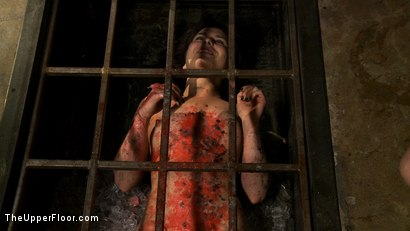 Photo number 19 from The Destruction of Juliette March shot for The Upper Floor on Kink.com. Featuring Juliette March and Sophie Monroe in hardcore BDSM & Fetish porn.