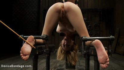 Photo number 2 from Little Emma is put in hard bondage and fucked by a big dick shot for Device Bondage on Kink.com. Featuring Emma Haize, Isis Love and Mickey Mod in hardcore BDSM & Fetish porn.
