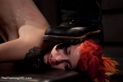 Photo number 12 from Sloane Soleil Day 2<br>Extreme Torture and Inescapable Bondage shot for The Training Of O on Kink.com. Featuring Sloane Soleil in hardcore BDSM & Fetish porn.