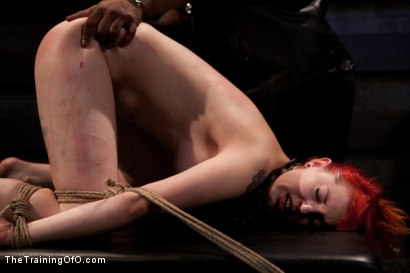 Photo number 14 from Sloane Soleil Day 2<br>Extreme Torture and Inescapable Bondage shot for The Training Of O on Kink.com. Featuring Sloane Soleil in hardcore BDSM & Fetish porn.