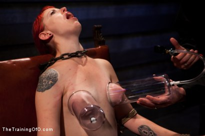 Photo number 3 from Sloane Soleil Day 2<br>Extreme Torture and Inescapable Bondage shot for The Training Of O on Kink.com. Featuring Sloane Soleil in hardcore BDSM & Fetish porn.