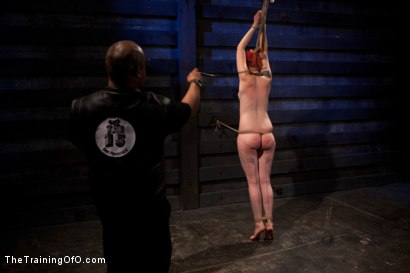 Photo number 8 from Sloane Soleil Day 2<br>Extreme Torture and Inescapable Bondage shot for The Training Of O on Kink.com. Featuring Sloane Soleil in hardcore BDSM & Fetish porn.