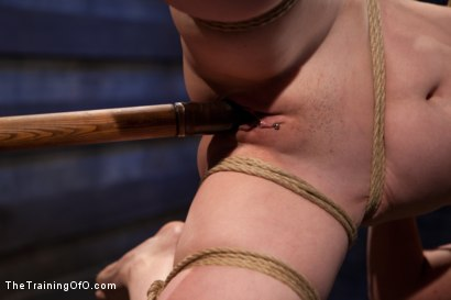 Photo number 5 from Sloane Soleil Day 1<br>Brutal Predicament Bondage shot for The Training Of O on Kink.com. Featuring Sloane Soleil in hardcore BDSM & Fetish porn.