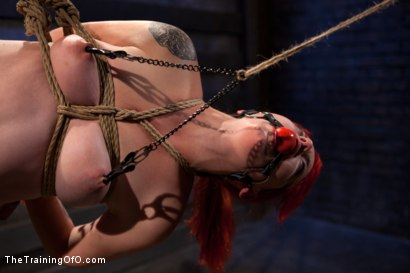 Photo number 6 from Sloane Soleil Day 1<br>Brutal Predicament Bondage shot for The Training Of O on Kink.com. Featuring Sloane Soleil in hardcore BDSM & Fetish porn.