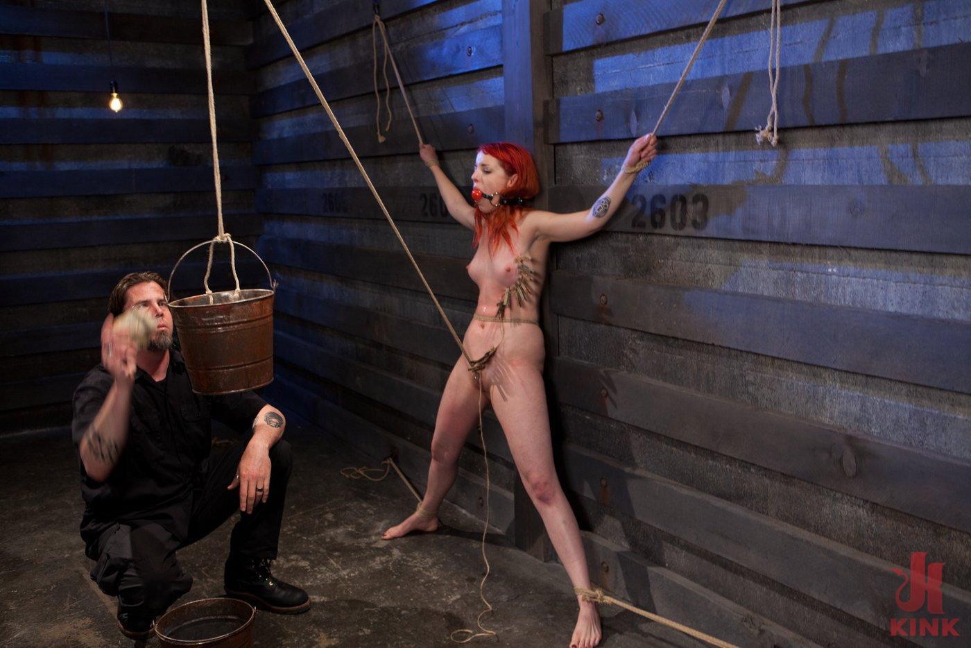 Photo number 9 from Sloane Soleil Day 1<br>Brutal Predicament Bondage shot for The Training Of O on Kink.com. Featuring Sloane Soleil in hardcore BDSM & Fetish porn.