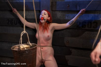 Photo number 14 from Sloane Soleil Day 1<br>Brutal Predicament Bondage shot for The Training Of O on Kink.com. Featuring Sloane Soleil in hardcore BDSM & Fetish porn.