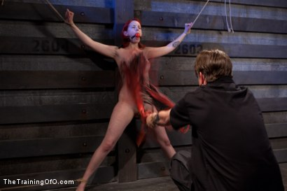 Photo number 7 from Sloane Soleil Day 1<br>Brutal Predicament Bondage shot for The Training Of O on Kink.com. Featuring Sloane Soleil in hardcore BDSM & Fetish porn.