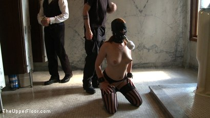 Photo number 14 from Service Day: Toilet Duty shot for The Upper Floor on Kink.com. Featuring Nerine Mechanique, Lilla Katt and Sophie Monroe in hardcore BDSM & Fetish porn.
