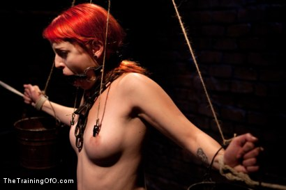 Photo number 6 from Sloane Soleil Day 3<br>Extreme Endurance Test with a Cock Sucking Reward shot for The Training Of O on Kink.com. Featuring Sloane Soleil and Maestro in hardcore BDSM & Fetish porn.