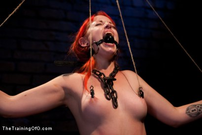 Photo number 7 from Sloane Soleil Day 3<br>Extreme Endurance Test with a Cock Sucking Reward shot for The Training Of O on Kink.com. Featuring Sloane Soleil and Maestro in hardcore BDSM & Fetish porn.
