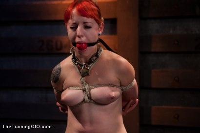 Photo number 14 from Sloane Soleil Day 4<br>Orgasm Control and Preperation for Cock shot for The Training Of O on Kink.com. Featuring Sloane Soleil in hardcore BDSM & Fetish porn.