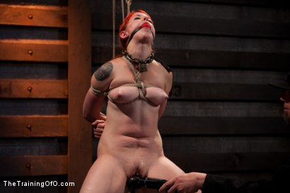 Photo number 3 from Sloane Soleil Day 4<br>Orgasm Control and Preperation for Cock shot for The Training Of O on Kink.com. Featuring Sloane Soleil in hardcore BDSM & Fetish porn.