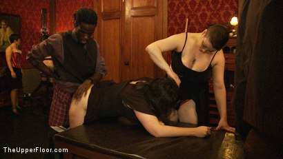 Photo number 6 from Kitty & Puppy Party shot for The Upper Floor on Kink.com. Featuring Sparky Sin Claire, Lilla Katt and Nerine Mechanique in hardcore BDSM & Fetish porn.