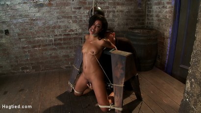 Photo number 12 from Brutal breath play & massive orgasms take this one to the edge of consciousness<br>A sweaty mess. shot for Hogtied on Kink.com. Featuring Skin Diamond in hardcore BDSM & Fetish porn.