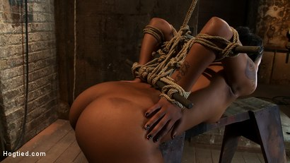 Photo number 3 from Skin's a sweaty mess, we rip massive orgasms from her quivering body.<br>Brutal bondage, perfect ass shot for Hogtied on Kink.com. Featuring Skin Diamond in hardcore BDSM & Fetish porn.