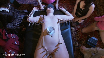 Photo number 2 from Sophie's Tea Party shot for The Upper Floor on Kink.com. Featuring Sophie Monroe, Jessie Cox, Kylie Liddell, Iona Grace, Sparky Sin Claire, Nerine Mechanique and Lilla Katt in hardcore BDSM & Fetish porn.
