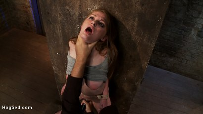 Photo number 12 from Redhead with cute freckles bound tightly & made to cum! Big puffy nipples clamped & weighted shot for Hogtied on Kink.com. Featuring Faye Reagen in hardcore BDSM & Fetish porn.