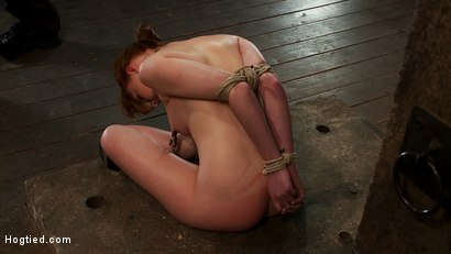 Photo number 11 from Sexy Irish girl is severely bound, made to suck cock and cum<br>Her puffy nipples clamped and abused shot for Hogtied on Kink.com. Featuring Marie McCray in hardcore BDSM & Fetish porn.