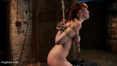 Photo number 14 from Sexy red head with HUGE lactating nipples severely bound in a reverse prayer<br>Made to cum!  shot for Hogtied on Kink.com. Featuring Marie McCray in hardcore BDSM & Fetish porn.