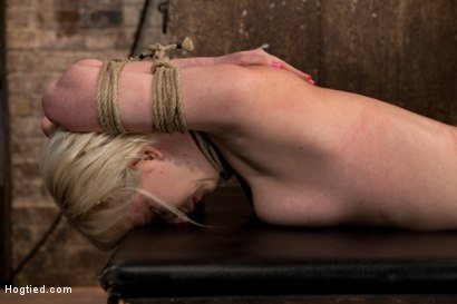 Photo number 4 from Blond tied into modified Category 4 Hogtied<br>Sucks cock, punished to the limit of her flexibility! shot for Hogtied on Kink.com. Featuring Isis Love and Cherry Torn in hardcore BDSM & Fetish porn.
