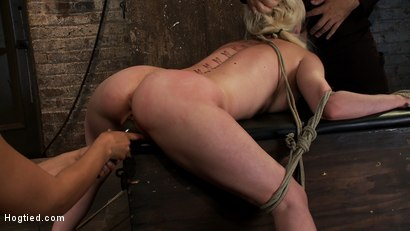 Photo number 10 from Cherry gets both ends brutally fucked<br>Cherry is made to cum over & over, helpless in her bondage! shot for Hogtied on Kink.com. Featuring Isis Love and Cherry Torn in hardcore BDSM & Fetish porn.