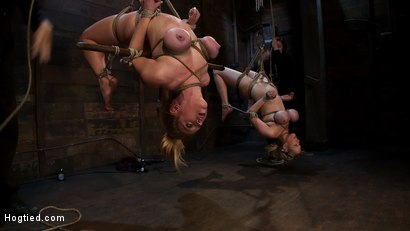 Photo number 8 from 2 amazing girls, 2 massive sets of bound boobage<br>Brutal screaming squirting orgasms from hell! shot for Hogtied on Kink.com. Featuring Katie Kox and Dee Williams in hardcore BDSM & Fetish porn.
