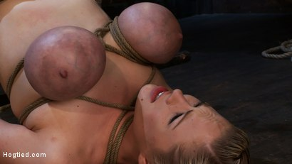 Photo number 5 from 2 amazing girls, 2 massive sets of bound boobage<br>Brutal screaming squirting orgasms from hell! shot for Hogtied on Kink.com. Featuring Katie Kox and Dee Williams in hardcore BDSM & Fetish porn.