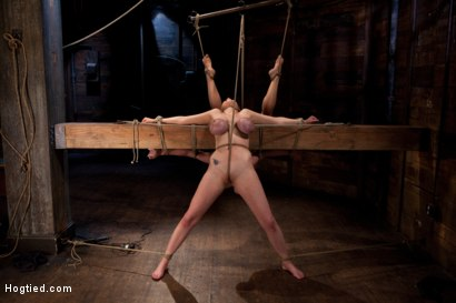 Photo number 12 from 2 girls, massive tits, bound, 1 suspended, 1 neck tied down & arched.<br>Both made to brutally cum! shot for Hogtied on Kink.com. Featuring Katie Kox and Dee Williams in hardcore BDSM & Fetish porn.