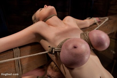 Photo number 5 from 2 girls, massive tits, bound, 1 suspended, 1 neck tied down & arched.<br>Both made to brutally cum! shot for Hogtied on Kink.com. Featuring Katie Kox and Dee Williams in hardcore BDSM & Fetish porn.