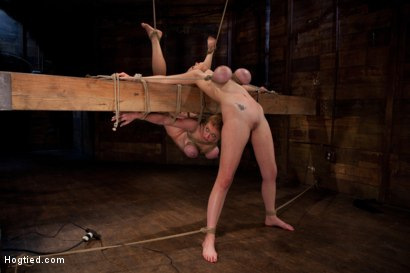 Photo number 6 from 2 girls, massive tits, bound, 1 suspended, 1 neck tied down & arched.<br>Both made to brutally cum! shot for Hogtied on Kink.com. Featuring Katie Kox and Dee Williams in hardcore BDSM & Fetish porn.