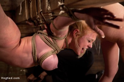 Photo number 9 from 2 girls, massive tits, bound, 1 suspended, 1 neck tied down & arched.<br>Both made to brutally cum! shot for Hogtied on Kink.com. Featuring Katie Kox and Dee Williams in hardcore BDSM & Fetish porn.